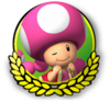 MK3DS Toadette icon