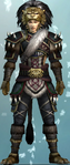 DW6E-DLC-Set02-03-Lion Armor