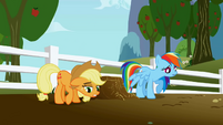 Disappointed Applejack and Rainbow Dash S1E03