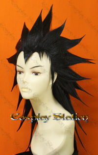 Gajeel Wig