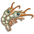 Prawn-icon
