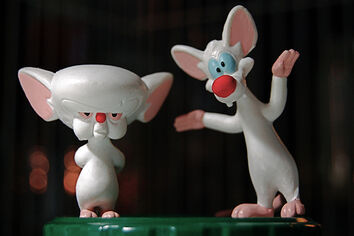 Pinky &amp; The Brain
