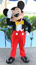 MickeyMouse parque