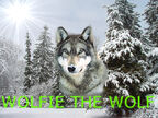 Wolfe the wuff