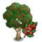 Yaupon Holly Tree-icon