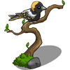 Bobolink-icon