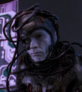Borg compound guard.jpg