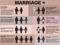 Traditional marriage bible