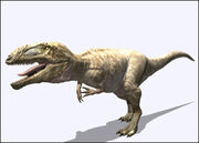 DPCarcharodontosaurus