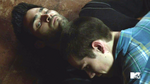 Fury Sterek