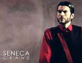 Seneca-crane