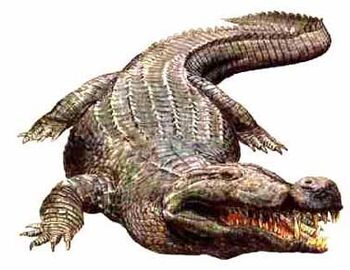 Deinosuchus