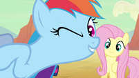 Rainbow Dash come in S2E14