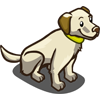Yellow Lab-icon