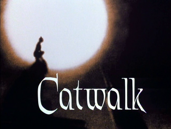 Catwalk