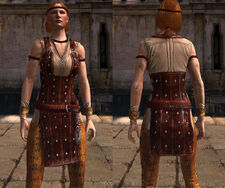DA2 Modified Officers&#39; Issue (Aveline Vallen - Companion armor) - Front