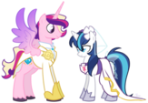 The wedding of Gleaming Shield and Prince Bolero