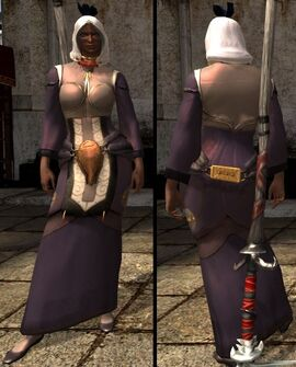DA2 Apostate's Robes - light chestpiece