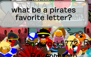 Rockhopper spotted