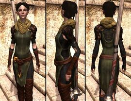 DA2 Vestments of the First - Merrill companion armor