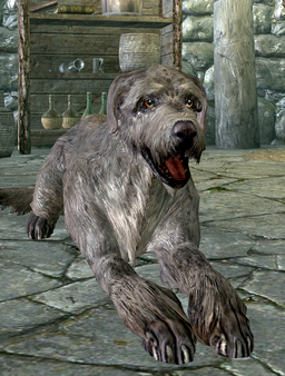 Ysgramor dog