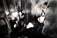 DIAURA new look