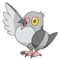 Pidove (anime NB).png