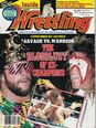 Inside Wrestling - May 1991.jpg
