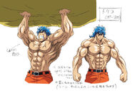 Toriko design