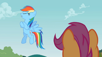Rainbow Dash 'No way!' S2E08