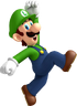 NSMBWii Luigi