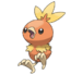 Torchic