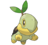 Turtwig