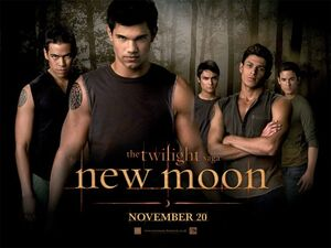 Twilight saga new moon ver12