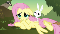 Fluttershy with grass on her face S2E22