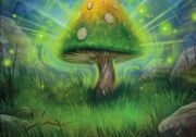 WildMushroomTCG