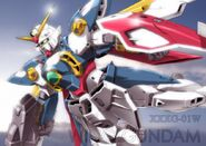 Wing gundam (2)