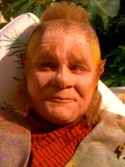 Neelix 2373