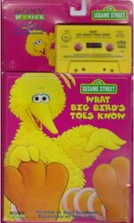 BigBirdsToes