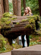 Rosalie-tree-log-breaking-dawn