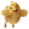 Babychocobo