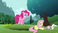 Fluttershy 'Not especially' S3E3