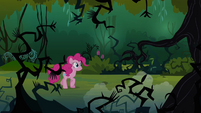 Pinkie walking in the Everfree Forest S3E03