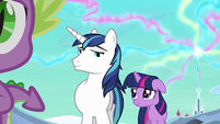 Shining Armor &#39;Starting to get embarrassing&#39; S3E2