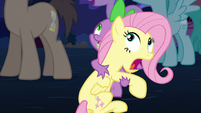 Spike holds Fluttershy S3E05