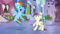 Rainbow Dash &#39;Come on&#39; S3E1