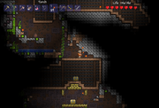 2 Underground Houses and a Jungle Shrine