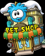 123kitten1pet shop