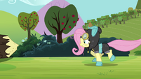 Fluttershy running S3E05