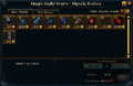Magic Guild Store - Mystic Robes stock.png